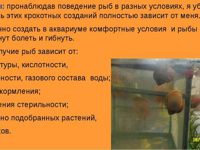 Выводы: пронаблюдав поведение рыб в разных условиях, я убедился, что жизнь эт...