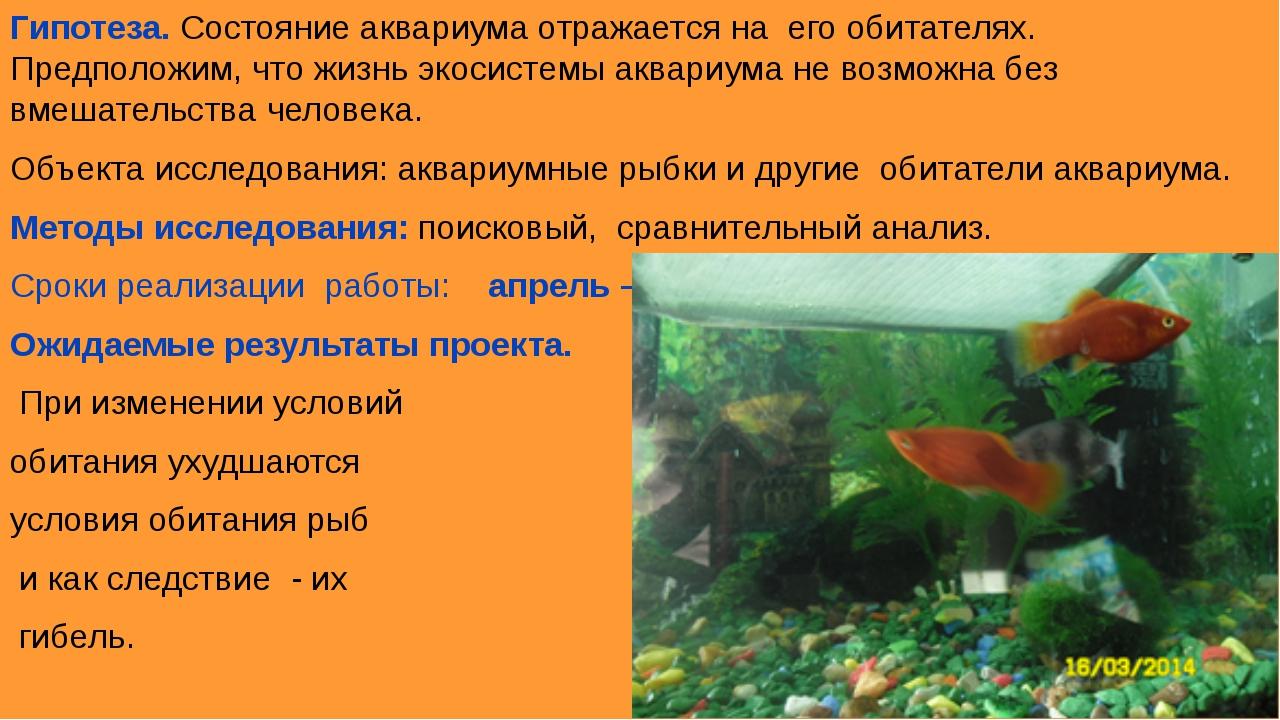 Гипотеза. Состояние аквариума отражается на его обитателях. Предположим, что...