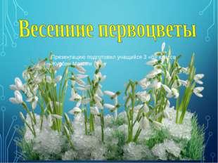 Презентацию подготовил учащийся 3 «б» класса Журбин Максим