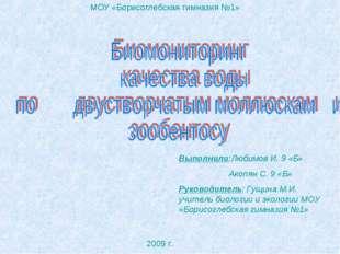 МОУ «Борисоглебская гимназия №1» Выполнили:Любимов И. 9 «Б» Акопян С. 9 «Б» Р
