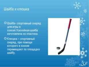 Шайба и клюшка Шайба- спортивный снаряд для игры в хоккей.Хоккейная шайба изг