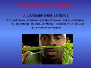 Удивительные факты 3. Запоминание запахов Нос человека не такой чувствительны