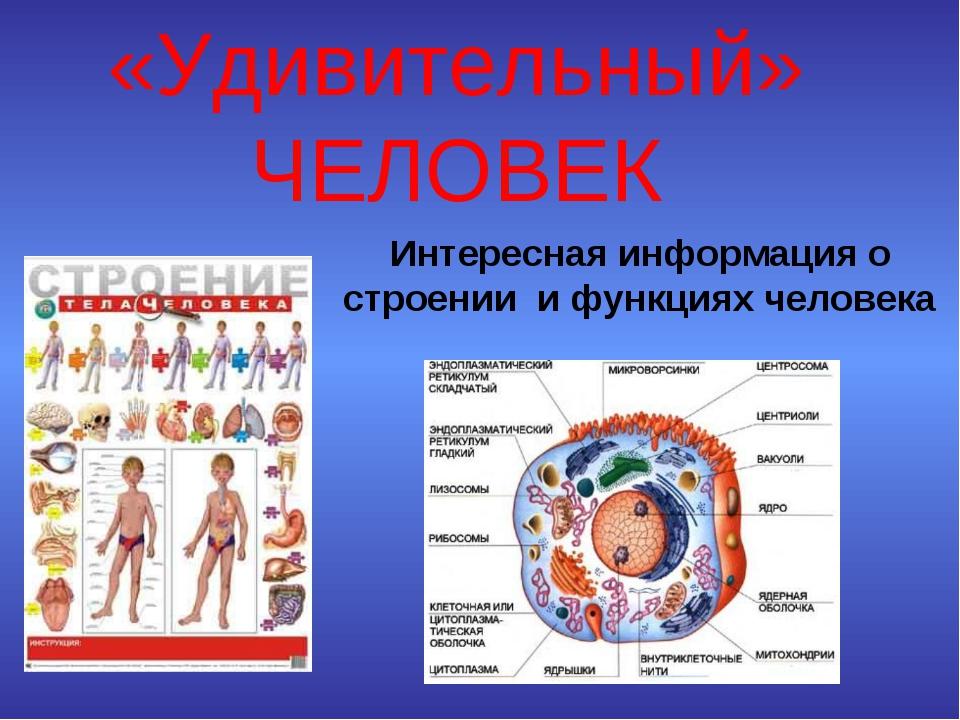 вам интересная информация с картинками по биологии можно заметить