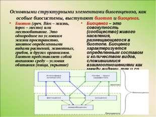 Основными структурными элементами биогеоценоза, как особые биосистемы, выступ