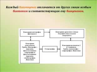 Каждый биогеоценоз отличается от других своим особым биотопом и соответствующ
