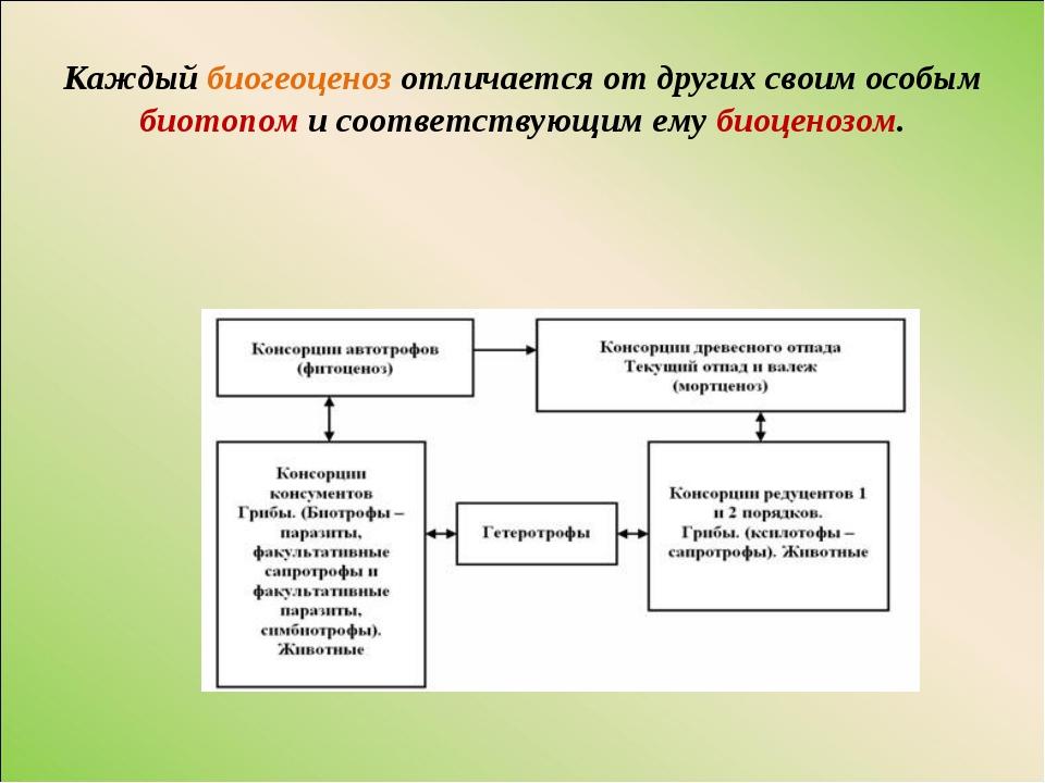 Каждый биогеоценоз отличается от других своим особым биотопом и соответствующ...
