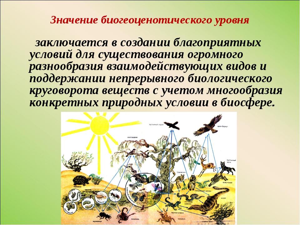 Значение биогеоценотического уровня заключается в создании благоприятных усло...