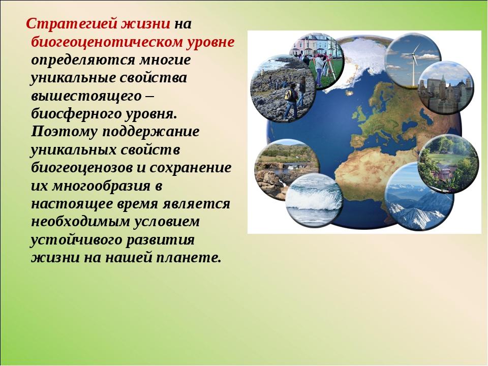 Стратегией жизни на биогеоценотическом уровне определяются многие уникальные...