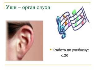 Уши – орган слуха Работа по учебнику: с.26