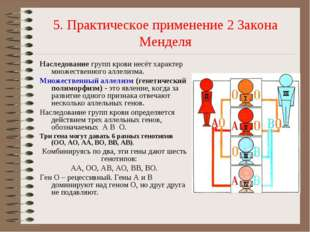 5. Практическое применение 2 Закона Менделя Наследованиегрупп крови несёт ха