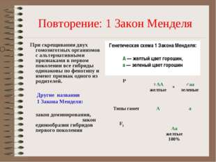 Повторение: 1 Закон Менделя При скрещивании двух гомозиготных организмов с ал