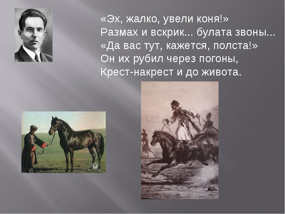 «Эх, жалко, увели коня!» Размах и вскрик... булата звоны... «Да вас тут, каже...