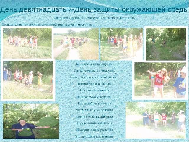 День девятнадцатый-День защиты окружающей среды Операция «Тропинка» - экскурс...
