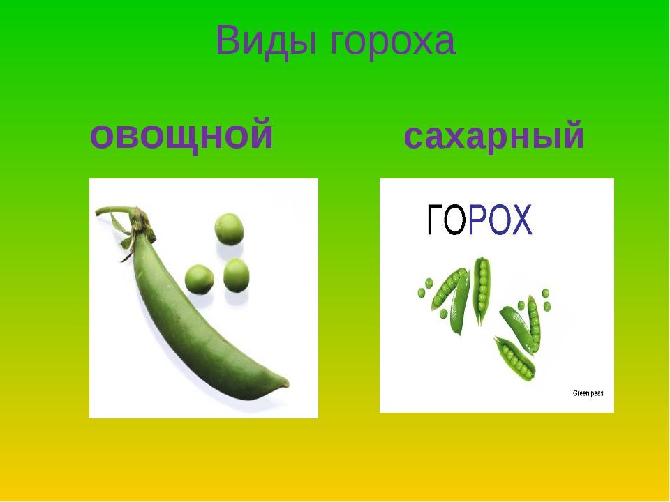 Виды гороха овощной сахарный
