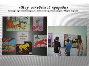 «Мир заповедной природы» конкурс противопожарных плакатов в рамках акции «Мар