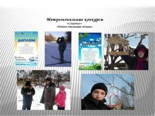 Межрегиональные конкурсы «Следопыт» «Помоги зимующим птицам»
