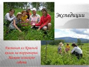 Растения из Красной книги на территории Айского сельского совета Экспедиции