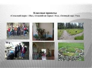 Классные проекты: «Сельский парк» -10кл, «Альпийсая горка»- 8 кл, «Зеленый с
