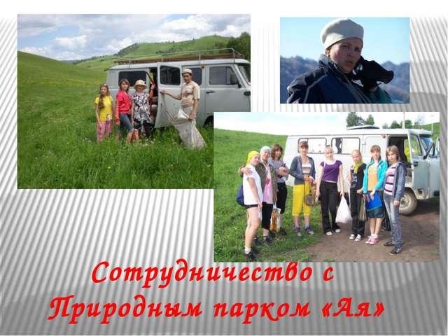 Сотрудничество с Природным парком «Ая»