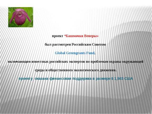 """проект """"Башмачки Венеры» был рассмотрен Российским Советом Global Greengrant..."""