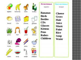 Bananas Birds Bottles CDs Glasses Kittens Pens Rulers Children Cheese Grass H
