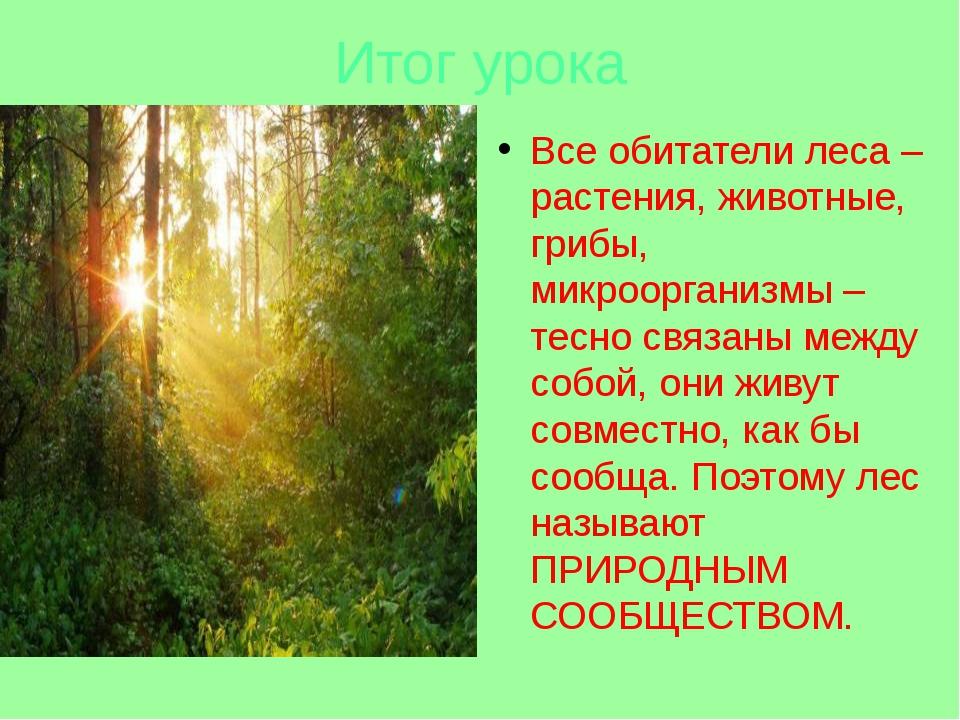 Итог урока Все обитатели леса – растения, животные, грибы, микроорганизмы – т...