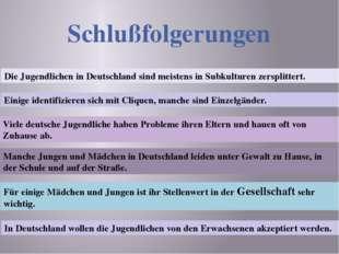 Schlußfolgerungen Die Jugendlichen in Deutschland sind meistens in Subkulture
