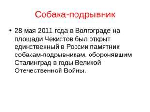 Собака-подрывник 28 мая 2011 года в Волгограде на площади Чекистов был открыт