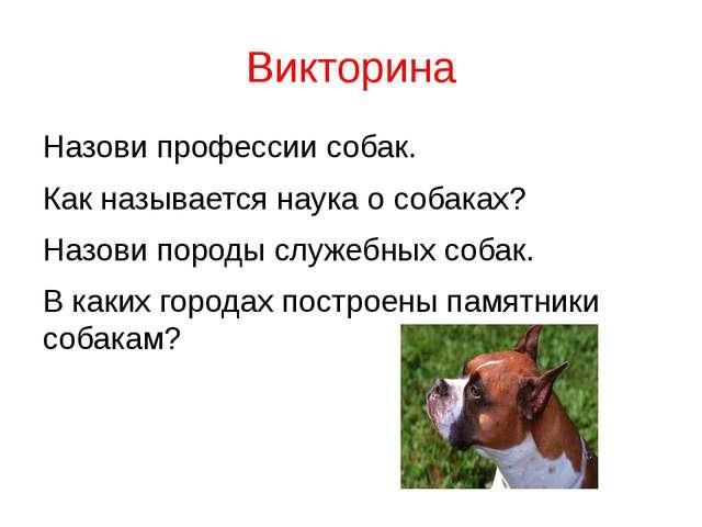 Викторина Назови профессии собак. Как называется наука о собаках? Назови поро...