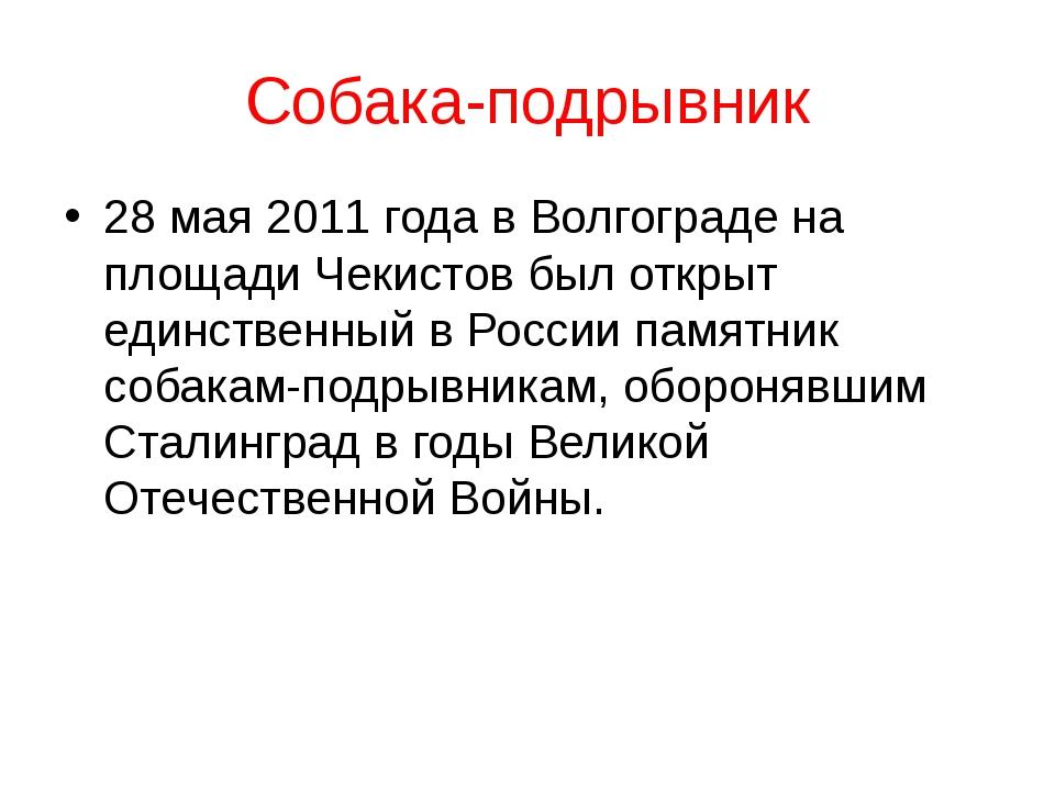 Собака-подрывник 28 мая 2011 года в Волгограде на площади Чекистов был открыт...