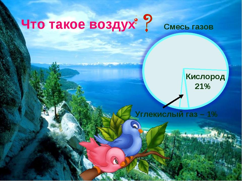 Что такое воздух Смесь газов Кислород 21% Углекислый газ – 1%