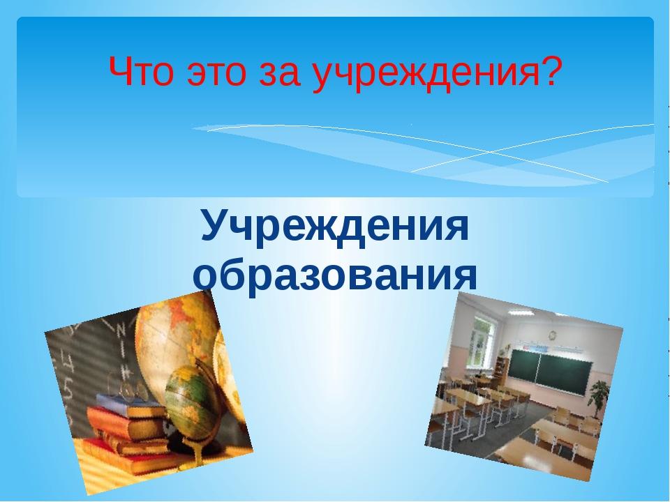 Учреждения образования Что это за учреждения?
