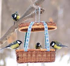 C:\Users\lenovo\Desktop\Зимующие птицы\images.jpeg