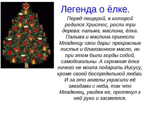 Легенда о ёлке. Перед пещерой, в которой родился Христос, росли три дерева:...