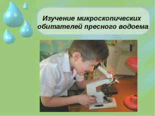 Изучение микроскопических обитателей пресного водоема