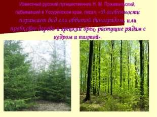 Известный русский путешественник Н. М. Пржевальский, побывавший в Уссурийском