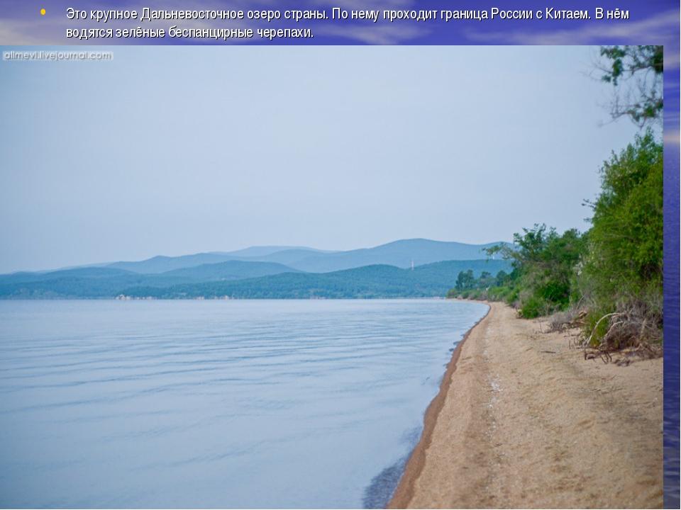 Это крупное Дальневосточное озеро страны. По нему проходит граница России с К...
