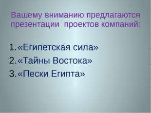 Вашему вниманию предлагаются презентации проектов компаний: «Египетская сила»