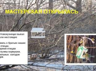 МАСТЕРСКАЯ ОТКРЫЛАСЬ Ну вот и в Новокузнецке выпал снег, пришли настоящие мо