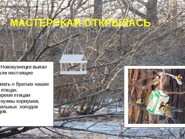 МАСТЕРСКАЯ ОТКРЫЛАСЬ Ну вот и в Новокузнецке выпал снег, пришли настоящие мо...