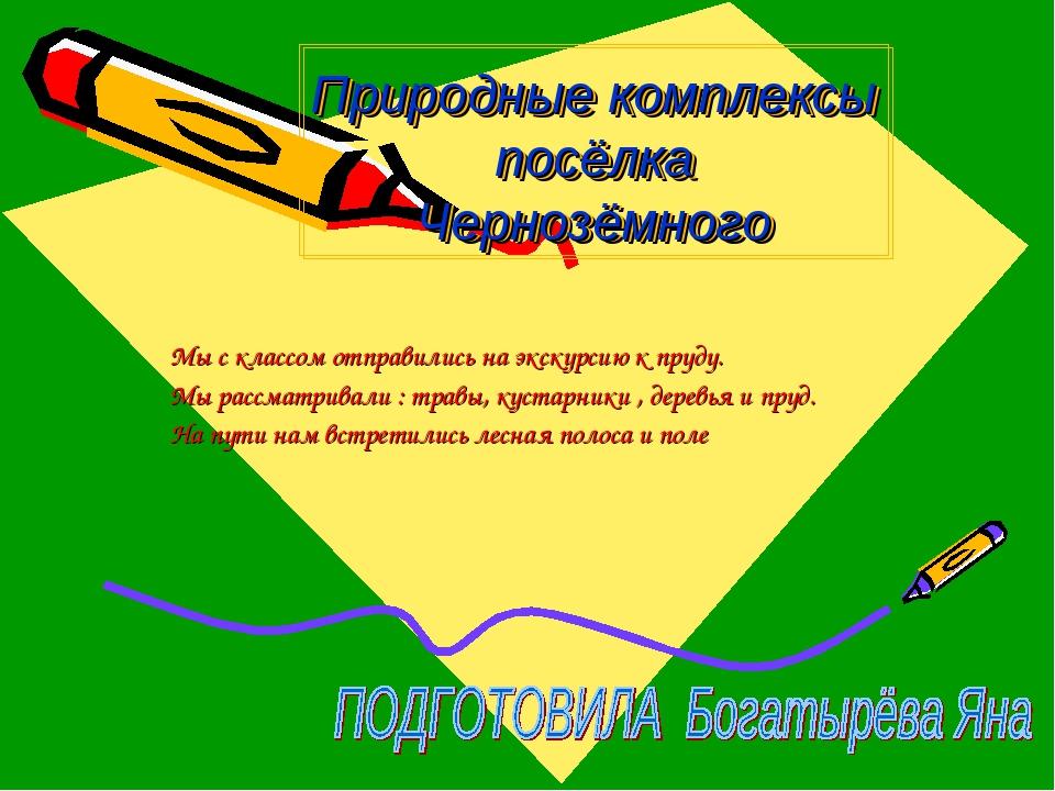 Природные комплексы посёлка Чернозёмного Мы с классом отправились на экскурси...