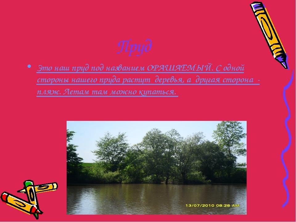 Пруд Это наш пруд под названием ОРАШАЕМЫЙ. С одной стороны нашего пруда расту...
