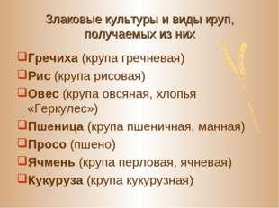 Злаковые культуры и виды круп, получаемых из них Гречиха (крупа гречневая) Ри