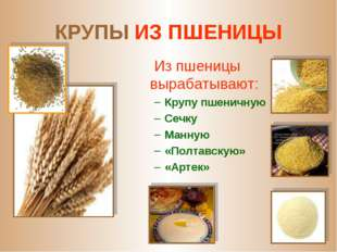 КРУПЫ ИЗ ПШЕНИЦЫ Из пшеницы вырабатывают: Крупу пшеничную Сечку Манную «Полта