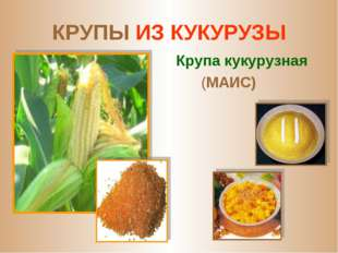 КРУПЫ ИЗ КУКУРУЗЫ Крупа кукурузная (МАИС)