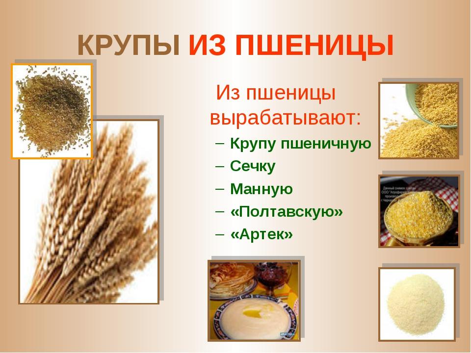КРУПЫ ИЗ ПШЕНИЦЫ Из пшеницы вырабатывают: Крупу пшеничную Сечку Манную «Полта...