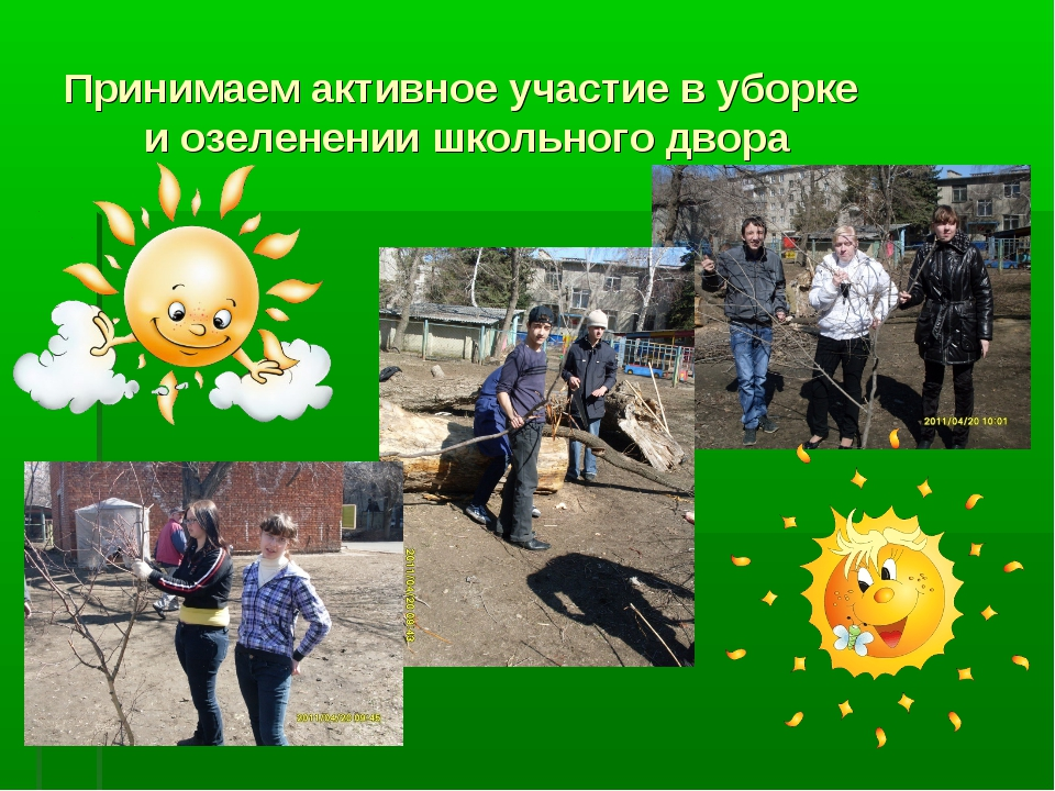 Принимаем активное участие в уборке и озеленении школьного двора