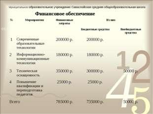 Финансовое обеспечение Муниципальное образовательное учреждение Саваслейская
