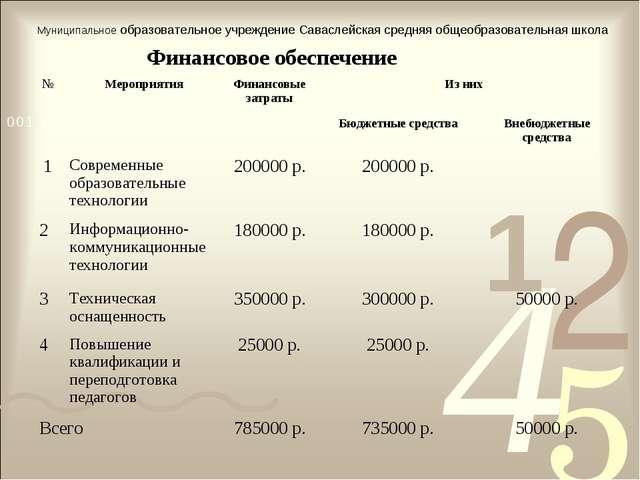 Финансовое обеспечение Муниципальное образовательное учреждение Саваслейская...