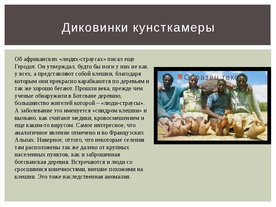Диковинки кунсткамеры Об африканских «людях-страусах» писал еще Геродот. Он у...
